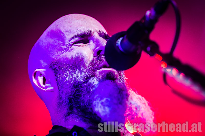 anthrax_IMG_6246
